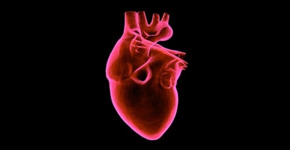 coronarias