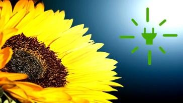 planta termo solar