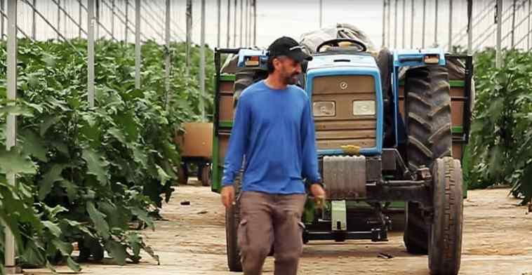 agricultor israelí