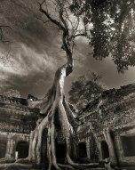 Beth Moon - Rilke's Bayon, Cambodia