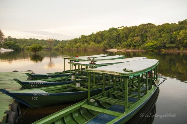 Brasile Amazzonia e Lencois Maranhenses barche nel Rio Negro
