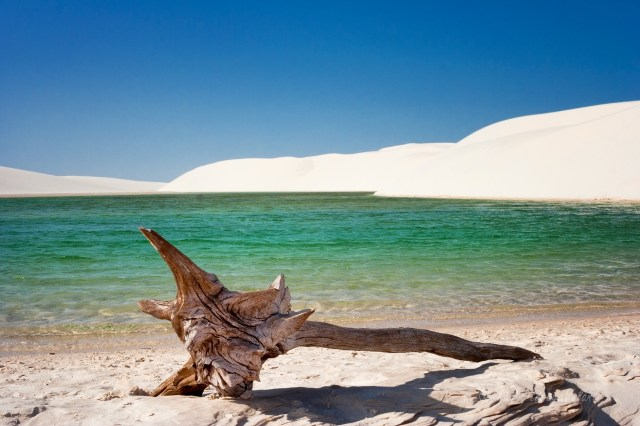 Brasile Lencois Maranhenses lago salato