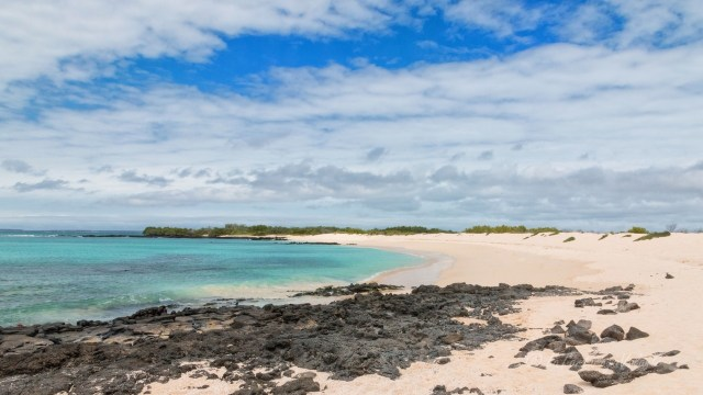 Galapagos spiaggia di Santa Cruz