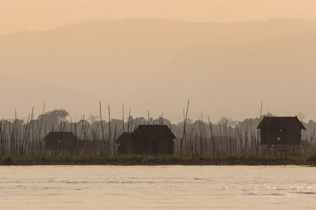 Viaggio in Myanmar, Lago Inle giarini galleggianti