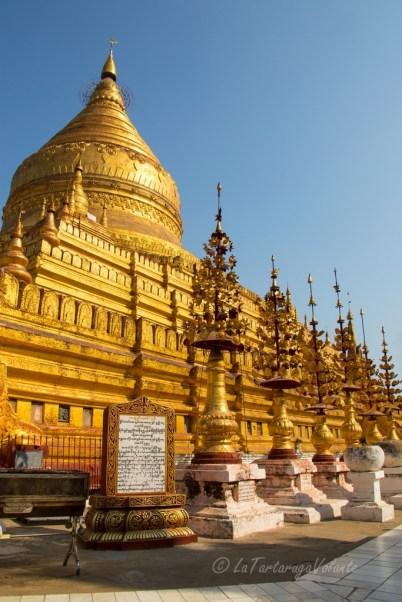 Viaggio in Myanmar Swedagon Pagoda