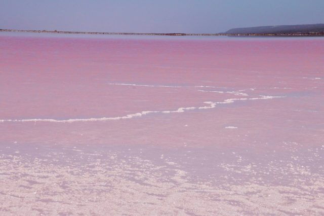 Western Australia Pink lake