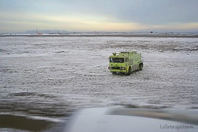 viaggio in baja california atterraggio di emergenza