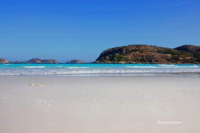 western australia sud lucky bay