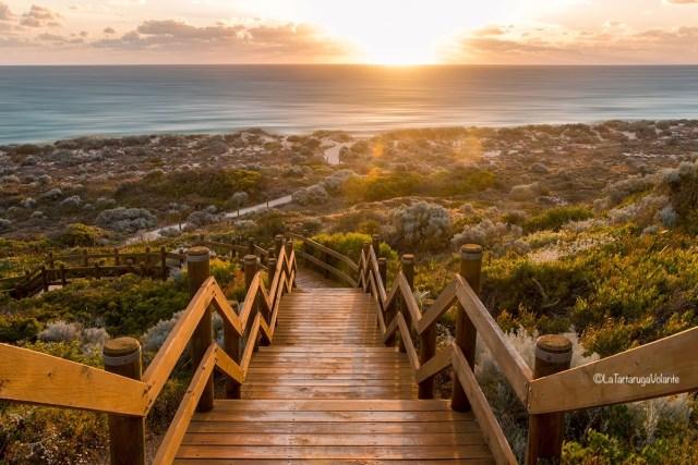 cosa vedere nel western australia sud
