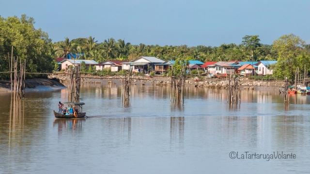 Borneo, Bako in attesa dell'alta marea