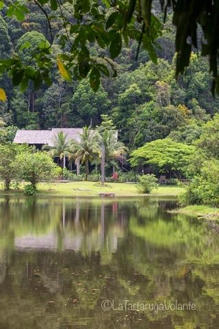 Borneo, Batang Ai lago