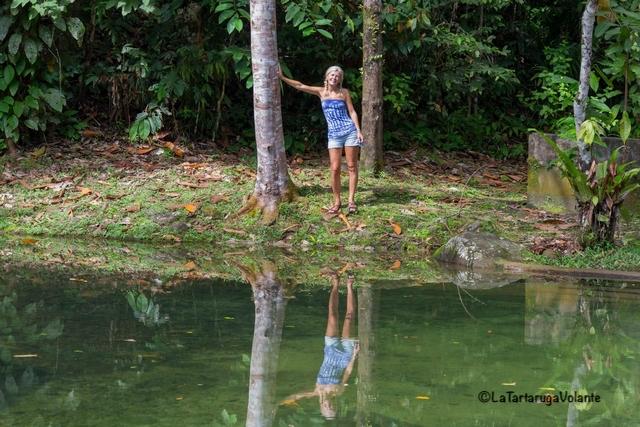 Borneo, Gunung Gading NP io sul laghetto
