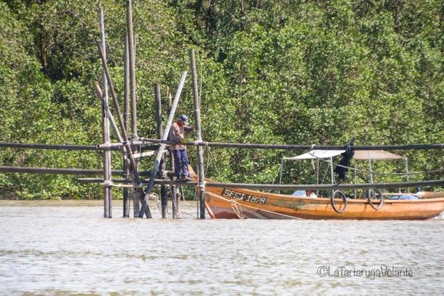 Borneo, pescatori lungo il fiume