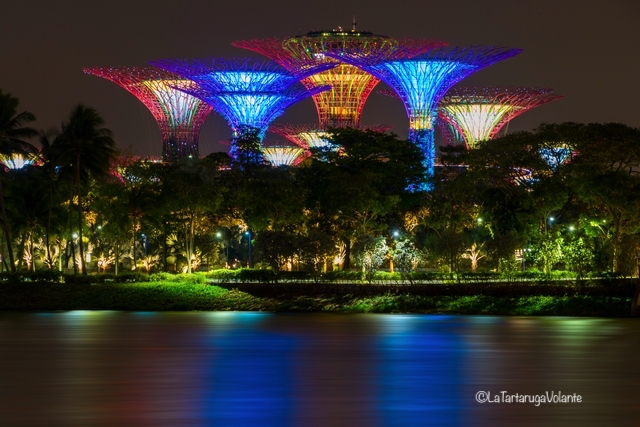 Singapore, Garden By The Bay on night