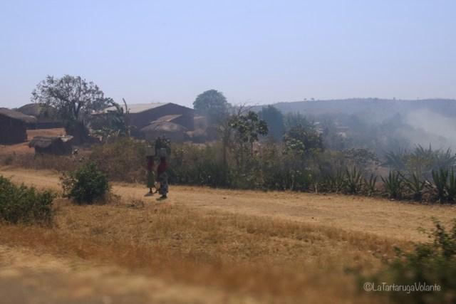 Malawi, donne a passeggio
