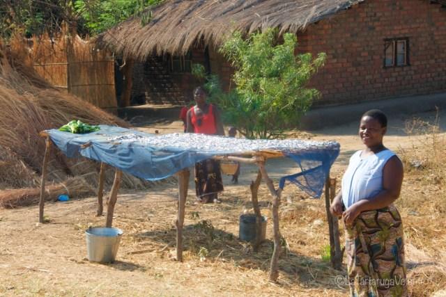 Malawi, giornata del pesce
