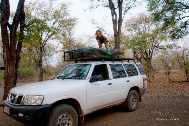 Malawi, pronti per il safari