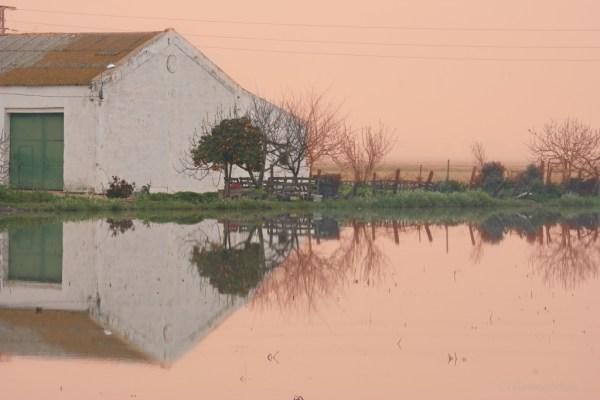 viaggio a Doñana, casa di campagna
