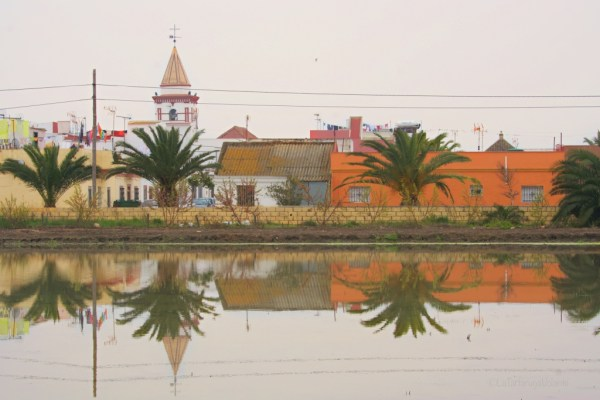 Doñana, paesino di campagna