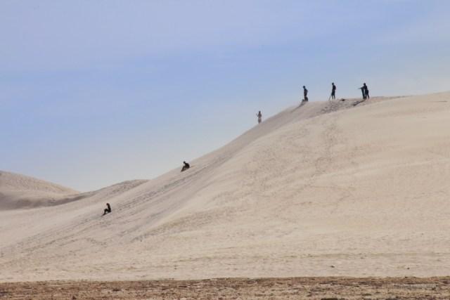 deserto dei pinnacoli, lancelin con sandboarding