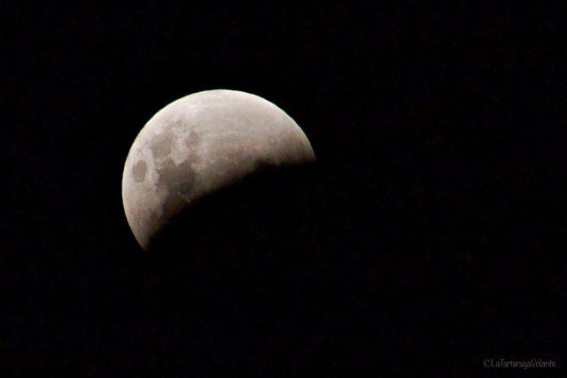 Astro fotografia: come fotografare le stelle e la luna