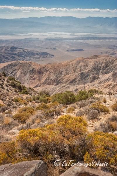 California, lungo la yucca valley
