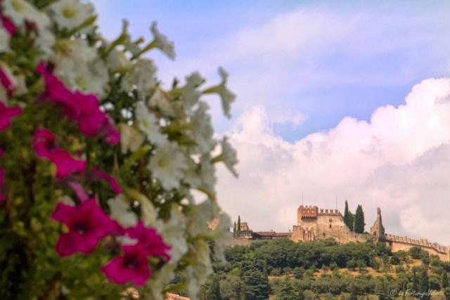 Marostica, castello superiore e fiori
