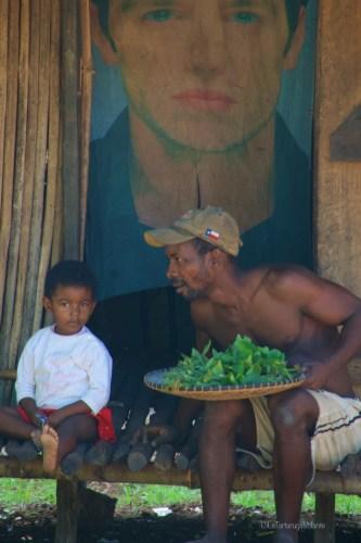 Viaggio in Madagascar, poster in casa
