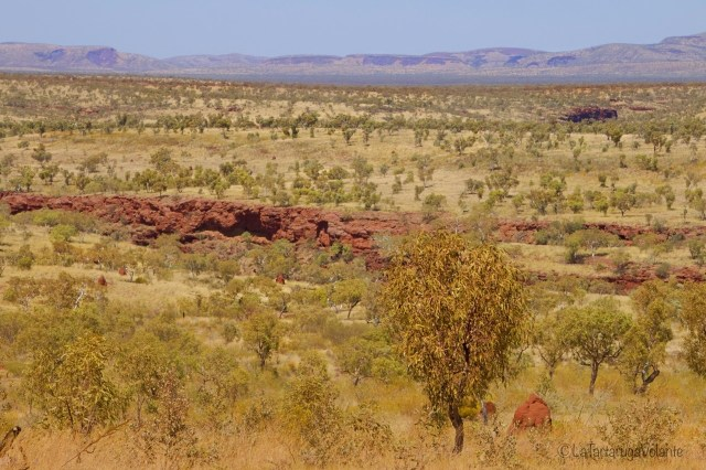 Viaggio outback australiano, paesaggio dall alto karijini