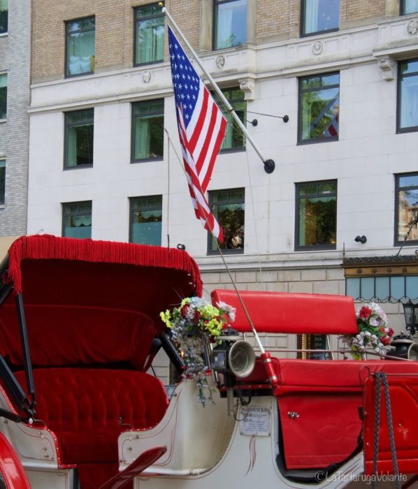 New York carrozza rossa a Central Park