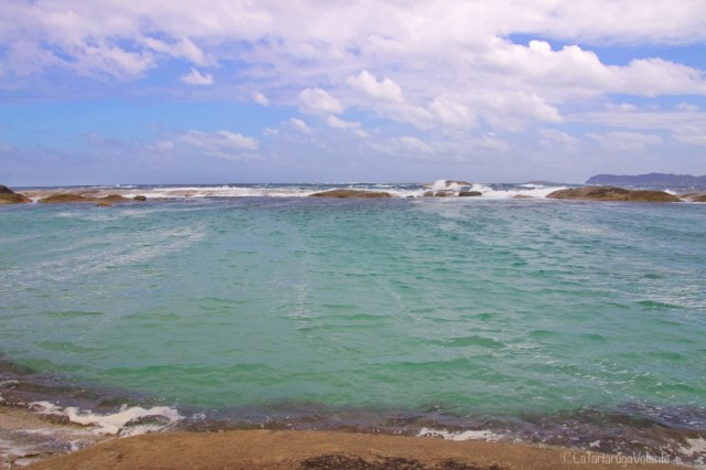 Green Pool particolare di oceano