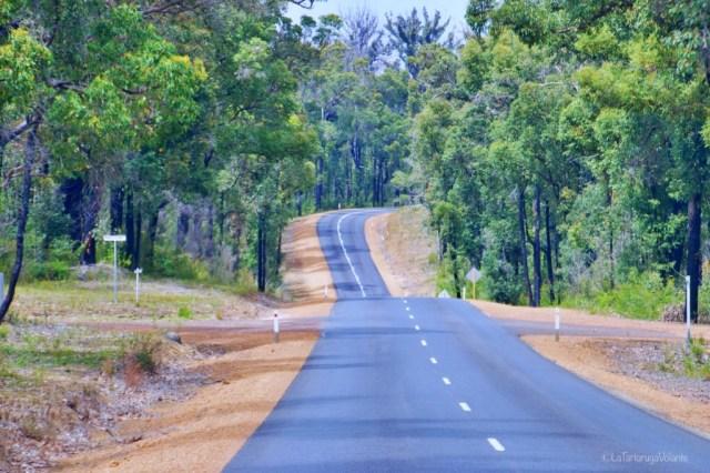 viaggio on the road, australia