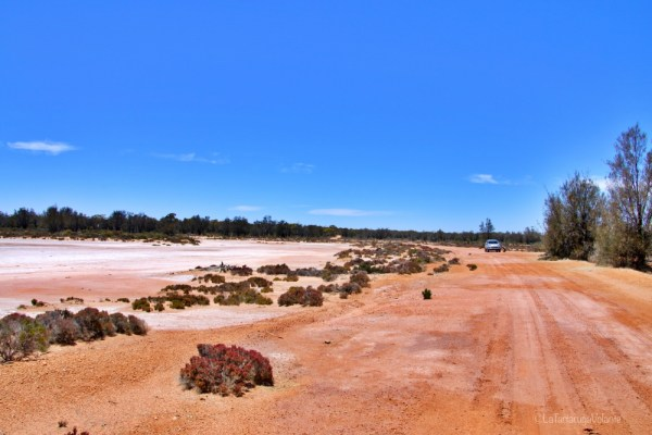 widgiemooltha, lake ballard e goldfields region