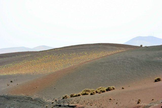 Lanzarote, monti color nocciola