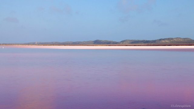 Il lago da rosa a viola, verso sera