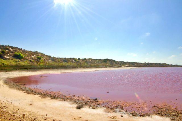Lago rosa e i raggi di sole
