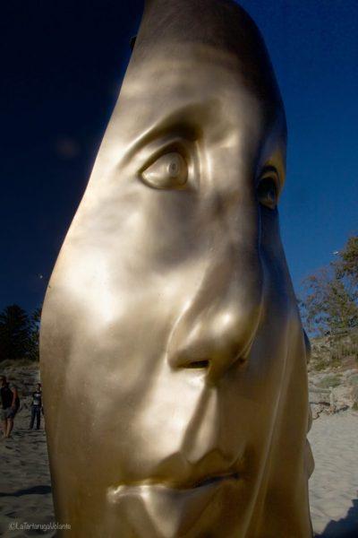 sculture viso