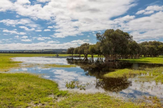 Paesaggi di Perth