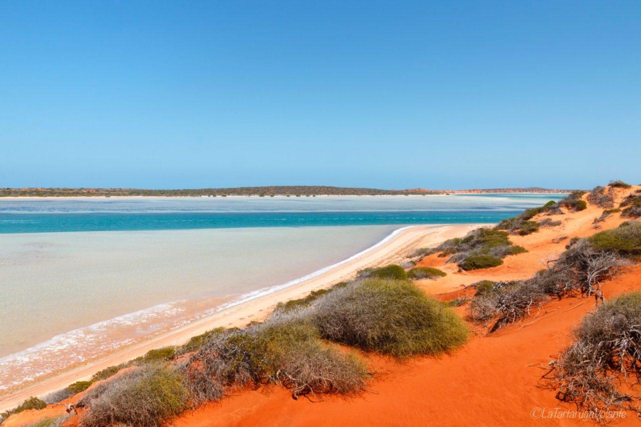 africano incontri Perth velocità dating scoperta verde