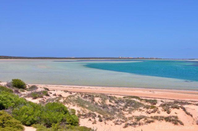 particolare della blue lagoon