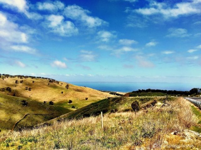 pianura dell'Australia Costa est