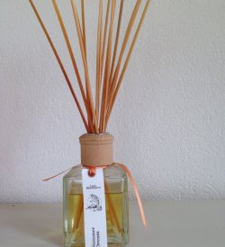 white musk infused with cedar, sandalwood and vetiver
