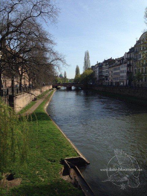 Besinnliche Morgenstimmung: Ill in Strasbourg