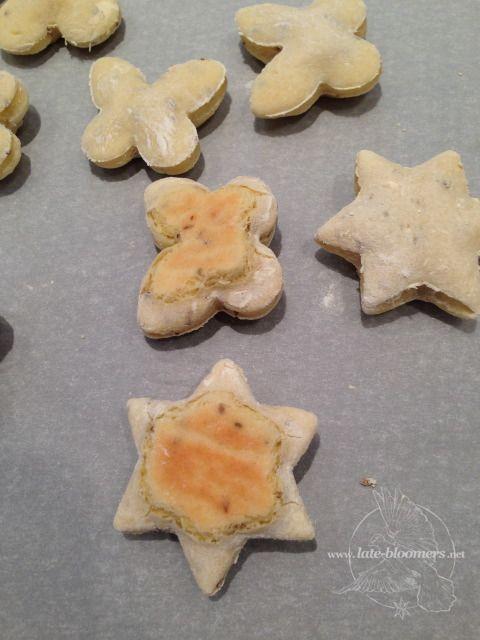 Stern auf dem Ruecken