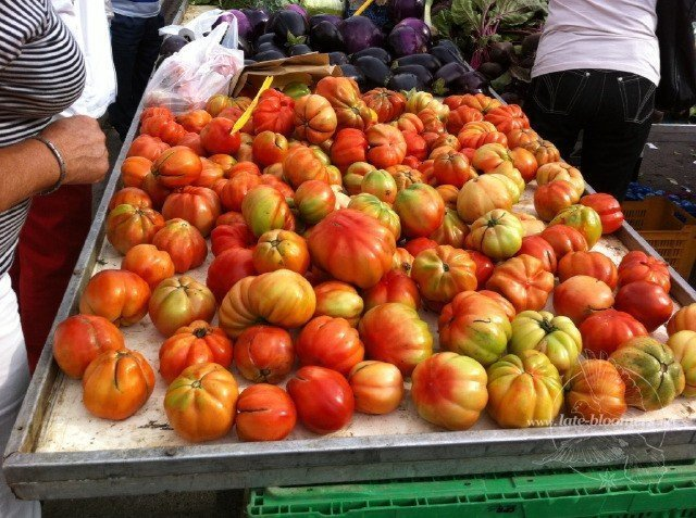 Late Bloomers Tomato Ketchup Recipe