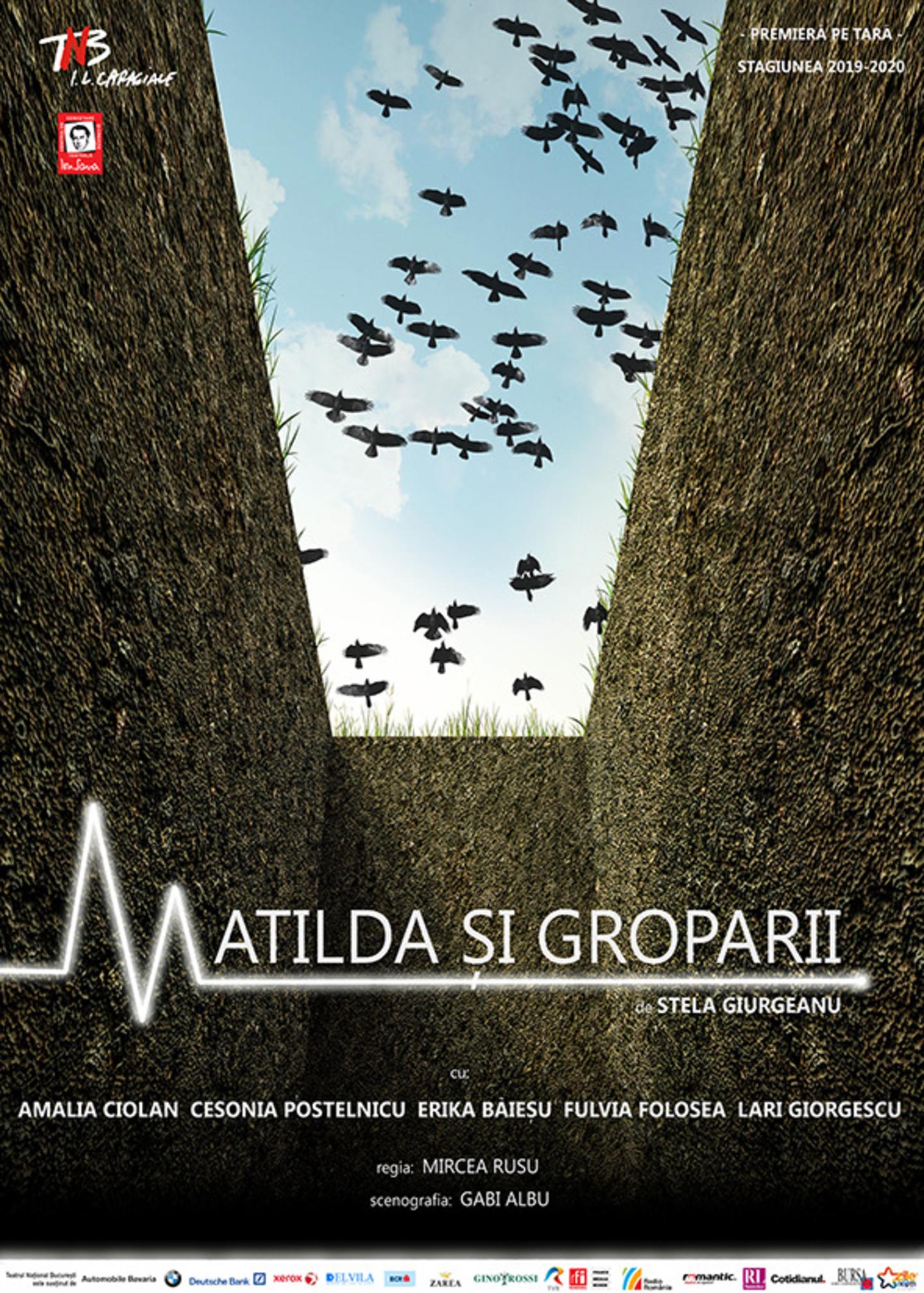 Matilda si groparii de Stela Giurgeanu - TNB AFIS