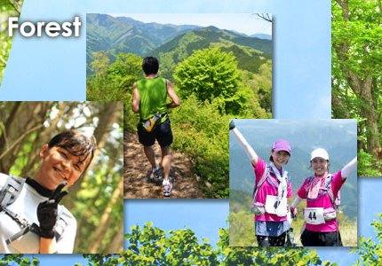 【レースレビュー】第5回TOKYO成木の森トレイルラン