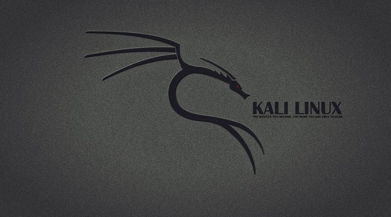 how to use kali linux