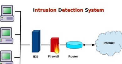 What type of IDS (intrusion detection system) should you use?