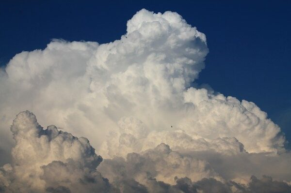 How MSPs can offer secure cloud file storage to their clients